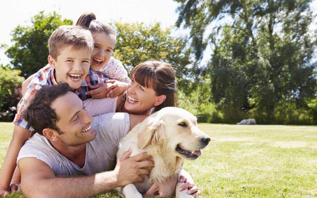 7 consejos para ser más felices a través de una adecuada nutrición