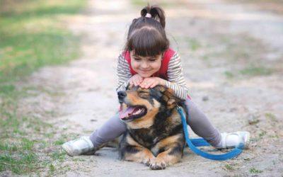 Los 25 mitos y realidades de la convivencia entre niños y sus mascotas