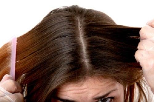 Consejos para mantener el cabello hidratado durante toda la temporada de lluvia